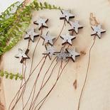 Rustic Silver Chunky Wood Star Picks