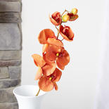 Rust Artificial Phalaenopsis Orchid Spray