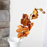 Light Brown Artificial Phalaenopsis Orchid Spray